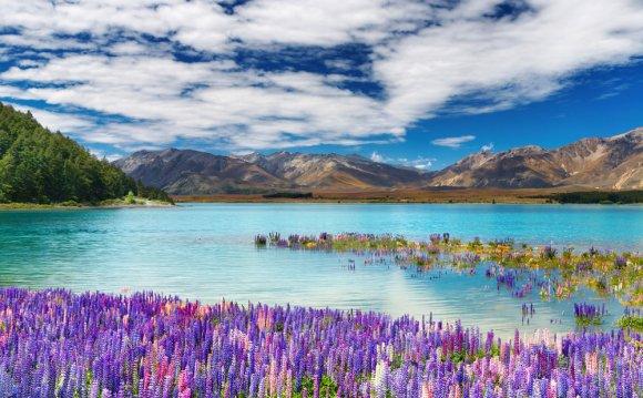 Остров новая зеландия - озеро